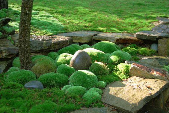 วัสดุปูพื้นสวน แต่งสวนเอง โดย เลคก้า