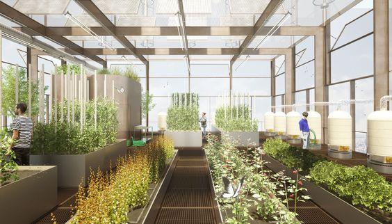 สร้างบ้านตามหลักเกษตรแบบผสมผสาน โดย เลคกล้า